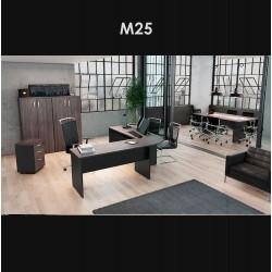 M25 - AMB. 2
